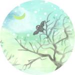 hibou-rond