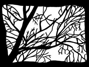 13-arbre