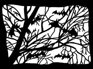 13-arbre_chauve_souris